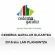 plan_trabajo_2013_eu
