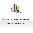 Asamblea General de Cederna Garalur 2013. Plan de trabajo para el año 2013