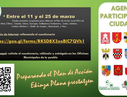 Las entidades locales de la Comarca de Sangüesa abren el proceso de participación ciudadana para la elaboración de los Planes de Acción Local.